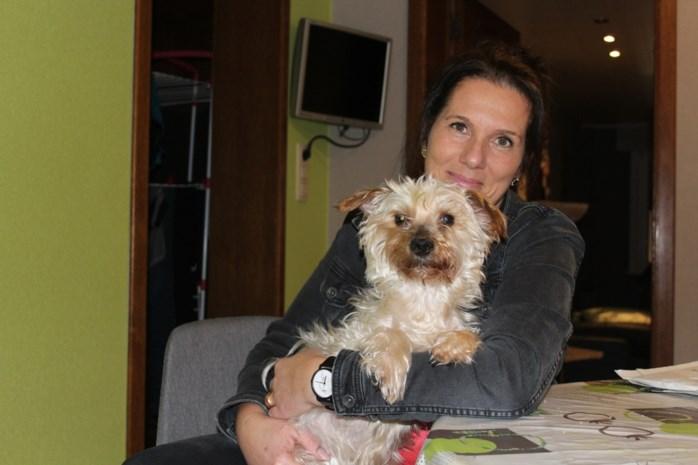 """Sandra start crowdfunding voor ziek hondje: """"Alleen een operatie kan Pietertje redden"""""""