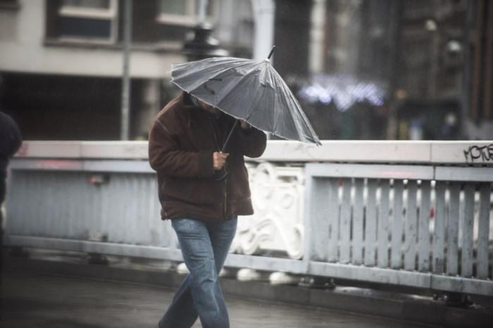 Hele dag kans op regen