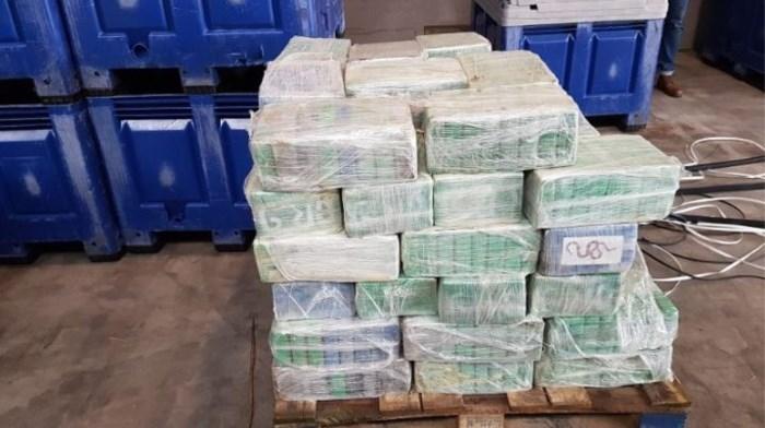 Container met 4.500 kilo cocaïne onderschept in Antwerpse haven