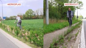 Waarom Merksplas een fietsparadijs is en Meerhout achterop hinkt: een kwestie van creativiteit en prioriteiten