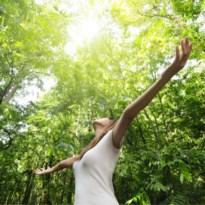 Japanse manier van ontstressen brengt rust terug