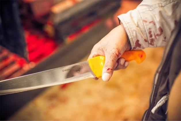 Vlaams verbod op onverdoofd slachten op tijdelijke slachtvloeren houdt stand