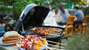 Barbecuerecepten voor wie liever niet te lang in de keuken staat