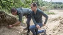 In het hol van de mierenleeuw: het agressiefste roofdier uit de Kempen