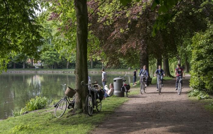 Ook in vijver van Stadspark in Turnhout blauwalgen aangetroffen, stad neemt maatregelen
