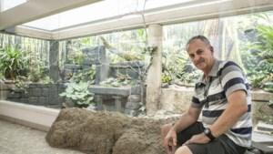 """Roman Cuynen (60) bouwde mee aan vogeltempel Antwerpse Zoo: """"Ik zette er een afbeelding van Kamasutra op"""""""