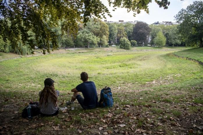 Waterprobleem in het Stadspark: dit stellen de politieke partijen voor als oplossing