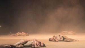 Danseres getuigt over Jan Fabre: