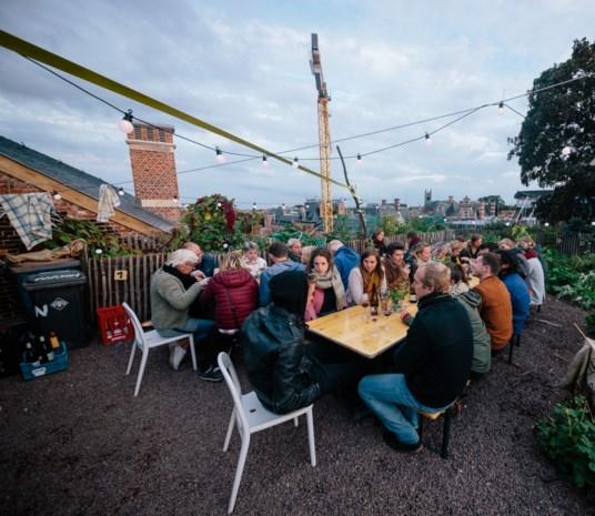 """Eerste Antwerpse dakfestival is schot in de roos: """"Als het aan ons ligt, komt er elke twee jaar een DAKkan"""""""