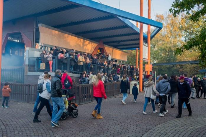 Griezelig druk op laatste dag van Bobbejaanland, bouw van nieuwe achtbaan gaat meteen van start