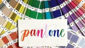 Koraal wordt de kleur van het jaar volgens Pantone