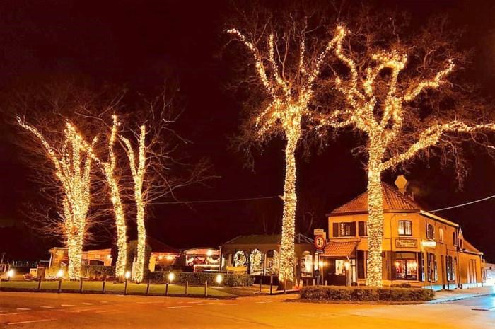 Hoogste kerstbomen staan bij De Vogelenzang