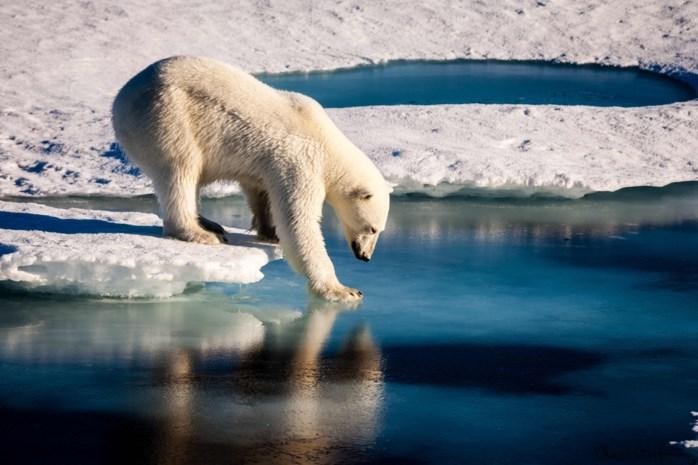 De planeet is wéér niet gered: het klimaatakkoord van Katowice in vijf vragen en antwoorden