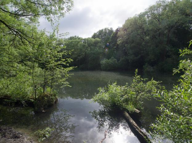 Natuurgebied Wolvenberg krijgt waterbuffers voor regenwater