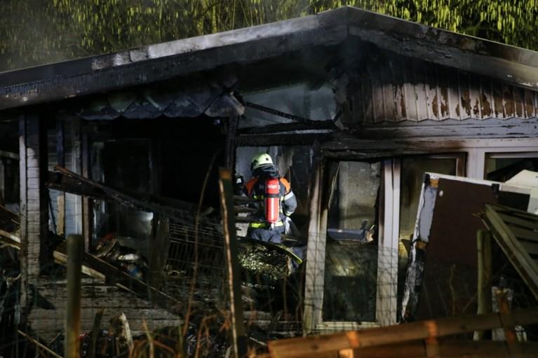 Houten chalet uitgebrand in Schilde, drie honden gered