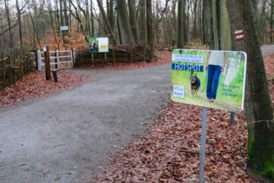 Loslopende honden: politie duikt op om hardleerse baasjes te beboeten
