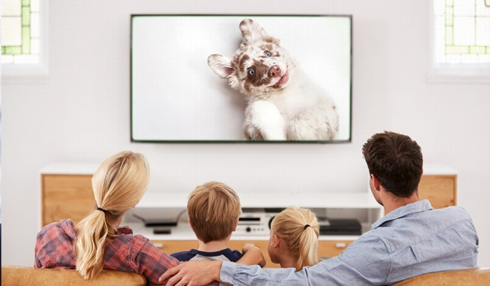 Hebt u een hond? En zag u op Vier plots meer reclame voor hondenvoer? Dat is geen toeval