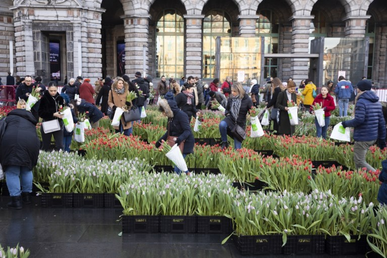 Gratis tulpen-pluktuin op Astridplein lokt veel volk