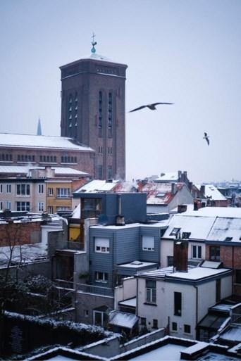 IN BEELD. Antwerpen ontwaakt met laagje sneeuw