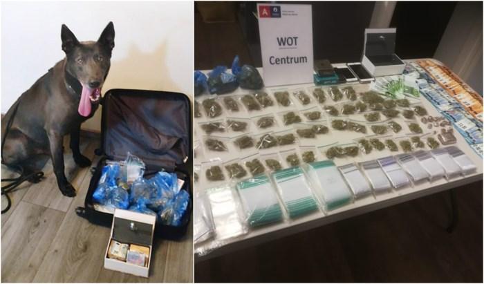 Drugshond Racko ontmaskert drugsdealer, ook tweede dealer op heterdaad betrapt