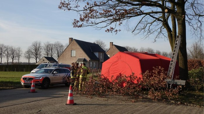 Man (63) overleden na val van ladder tijdens snoeiwerken
