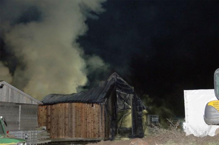 Loods van houtbedrijf zwaar vernield door brand
