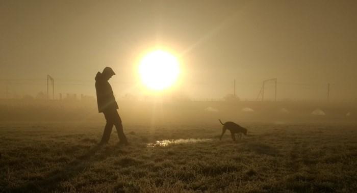 KMI waarschuwt voor dichte mist: code geel vanaf 22 uur