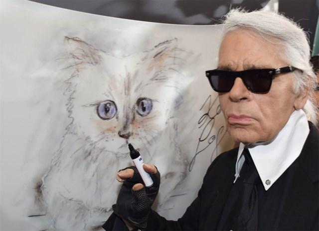 Kattin Karl Lagerfeld neemt afscheid van overleden baasje
