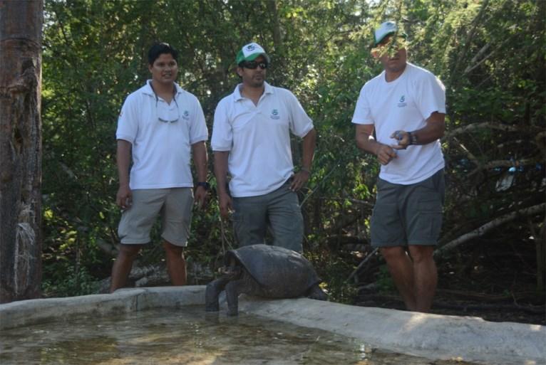 Uitgestorven gewaande reuzenschildpad opgedoken op Galapagos