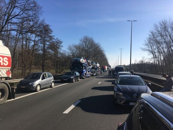 E313 vrijgemaakt na zwaar ongeval met vrachtwagens, bestuurder uren gekneld