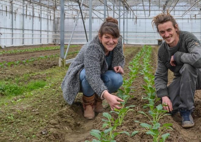 Jong koppel kweekt en buurt mag oogsten  (voor lidgeld van 350 euro per jaar)