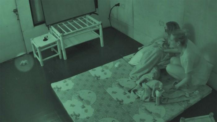"""Makers 'De Mol' bezorgen deelnemers helse nacht met dier in pikdonkere kamer: """"Het varken heeft prima geslapen"""""""
