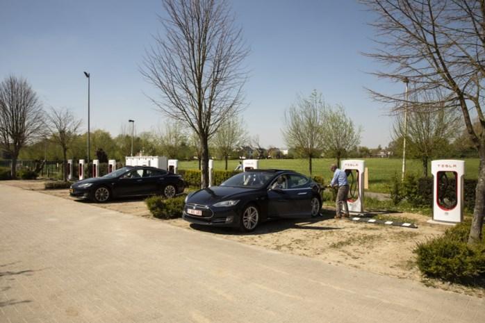 """Grootste Tesla-laadstation van het land opent in Edegem: """"Ik verwacht extra cliënteel"""""""