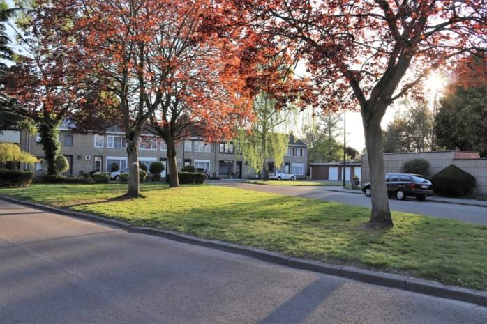 """Esdoornplein is eerste klimaatstraat van Mechelen: """"Ik zie er geen 86 uit omdat het hier een aangename buurt is"""""""