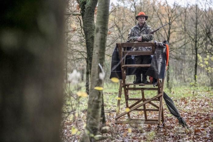 Jagers willen jacht op vossen en everzwijnen verruimen