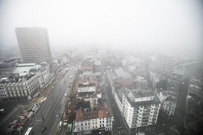 """Antwerpen wil af van hout- en kolenkachels: """"Mogelijk financieel steuntje in de rug voor eigenaars"""""""