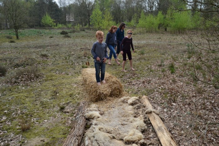 Onze reporter test het blotevoetenpad in de Heide uit: evenwichtsoefeningen en modder tussen de tenen