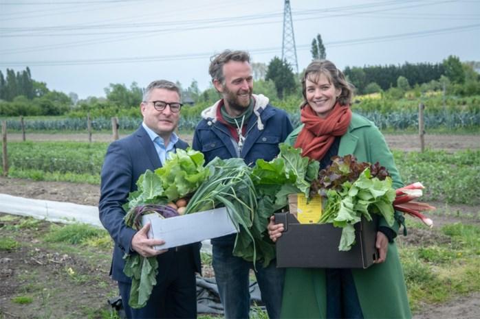 Consumenten ondersteunen landbouwers in CSA-boerderijen