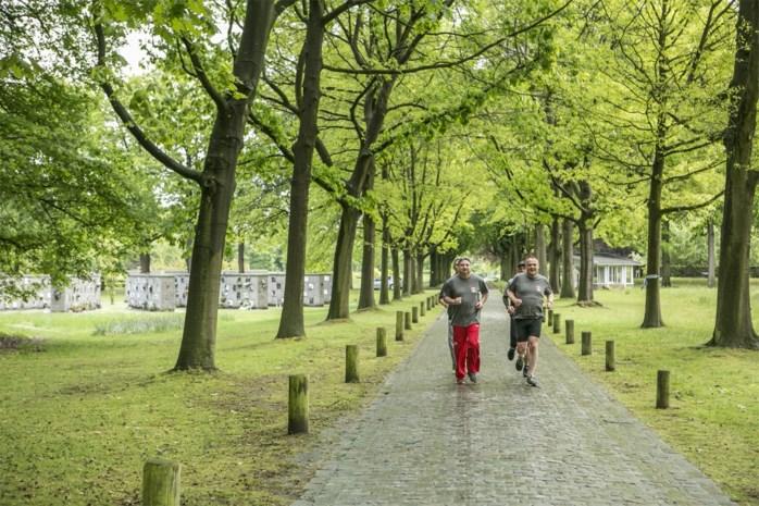 Met respect langs de graven: stad introduceert looproute in Schoonselhof