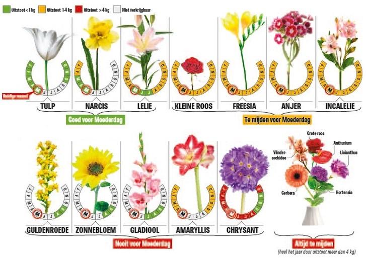 Waarom je beter geen boeket rozen koopt voor Moederdag