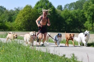 """Kesselse hondenfluisteraar in 'Don't Worry Be Happy': """"De mensen vonden het eerst raar, maar nu is er een wachtlijst"""""""