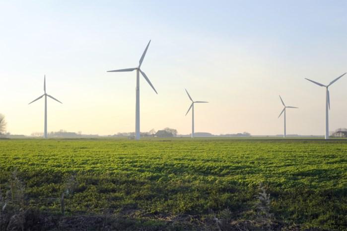 Vijf molens aan E34 leveren stroom voor 20.000 gezinnen