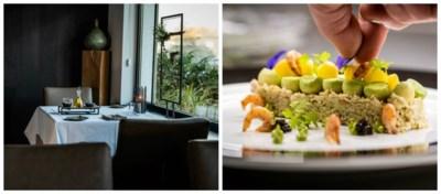 Restaurant Kris: vegetarische ontdekkingen op hoog niveau (4/5)