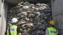 """Maleisië stuurt drie miljoen kilo plastic afval terug: """"Eet het voor mijn part op"""""""