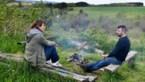 Koeienstal wordt vakantiehuis: zo geniet dit Antwerpse gezin van rust en ruimte