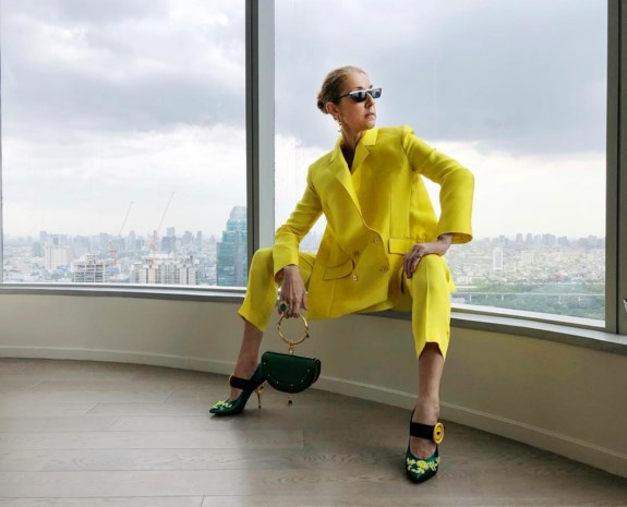 """Fans aan Céline Dion: """"EET! We maken ons zorgen om je"""""""