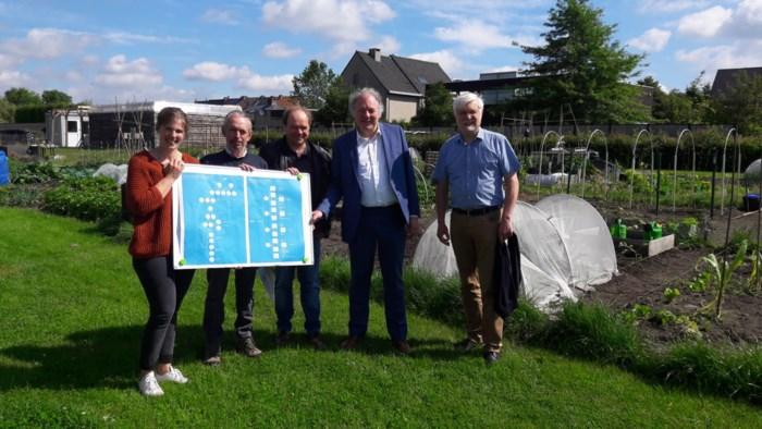 """Provincie promoot 'eetbaar groen' in steden en gemeenten: """"Van geveltuintje tot stadsboerderij"""""""