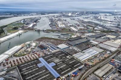 Nachtopening containerterminal PSA al na tien dagen op de helling: maatregel tegen files is te duur volgens transportsector