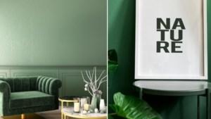 Groen in het interieur? Haal buiten naar binnen