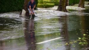 KMI waarschuwt voor intense regen en kondigt code geel af